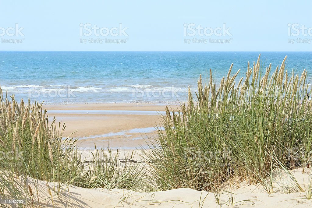 Sand beach in Formby, UK stock photo