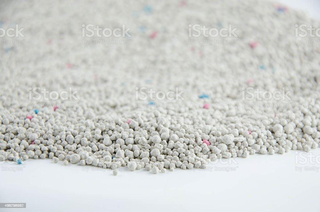 sand cat stock photo