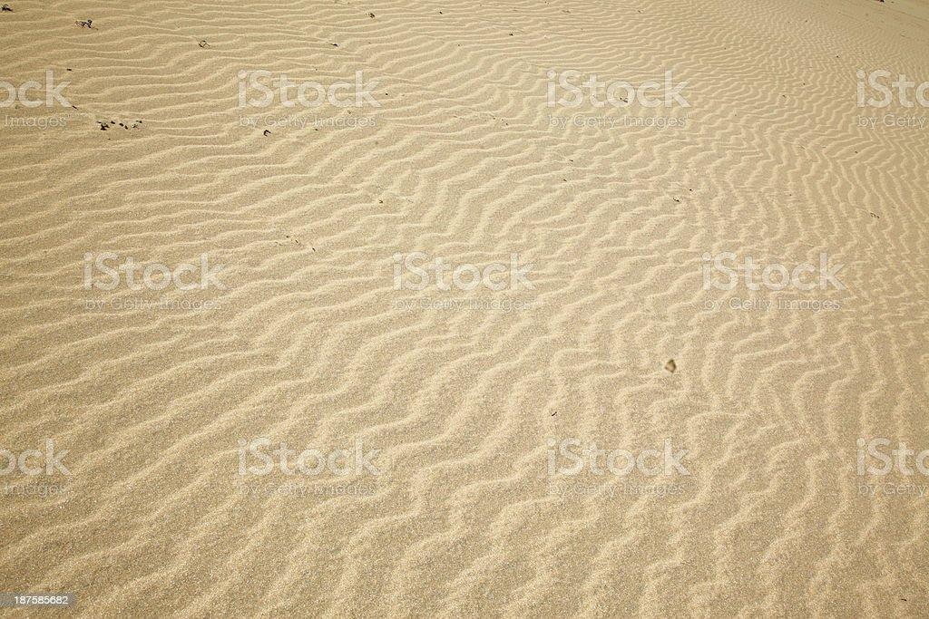 Sand close-up at Raudasandur beach. Theee Westfjords. Iceland. royalty-free stock photo