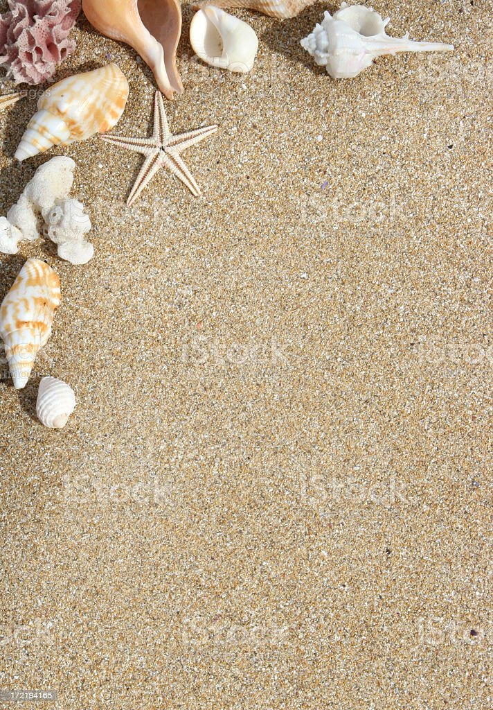 Sand colored background with assorted shells in the corner stock photo