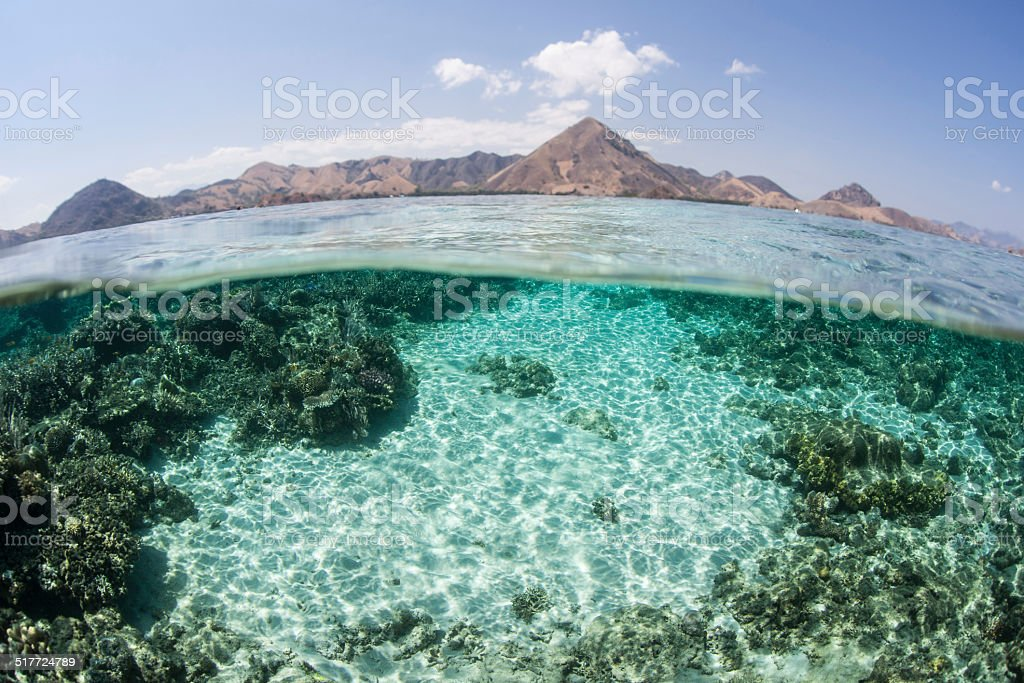 Sand, Coral, and Island stock photo