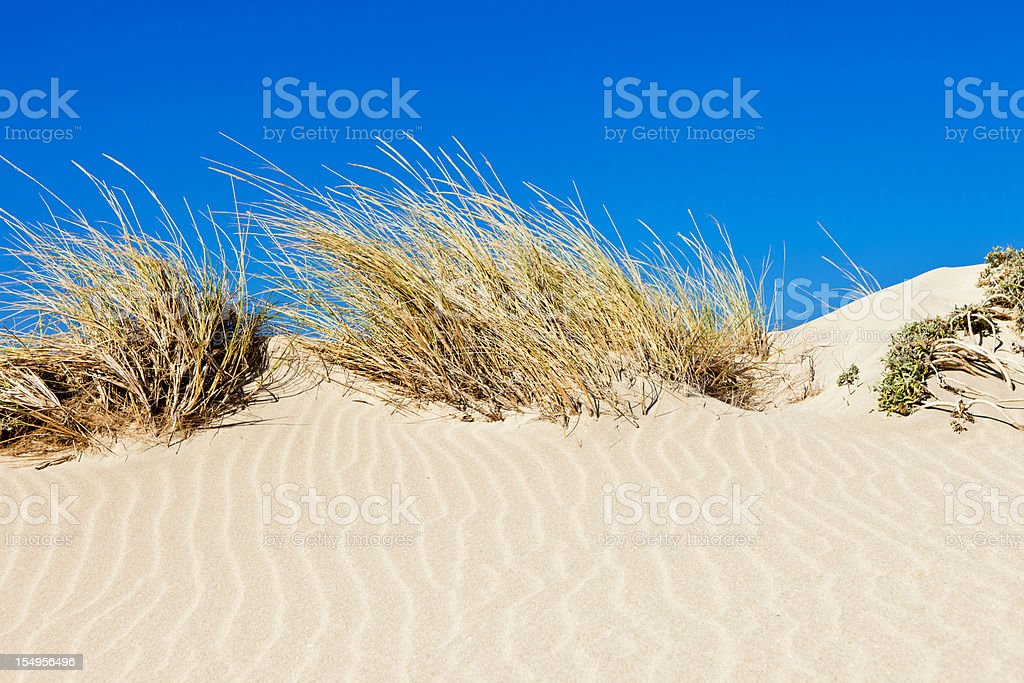 Sand dune and grass against blue sky royalty-free stock photo