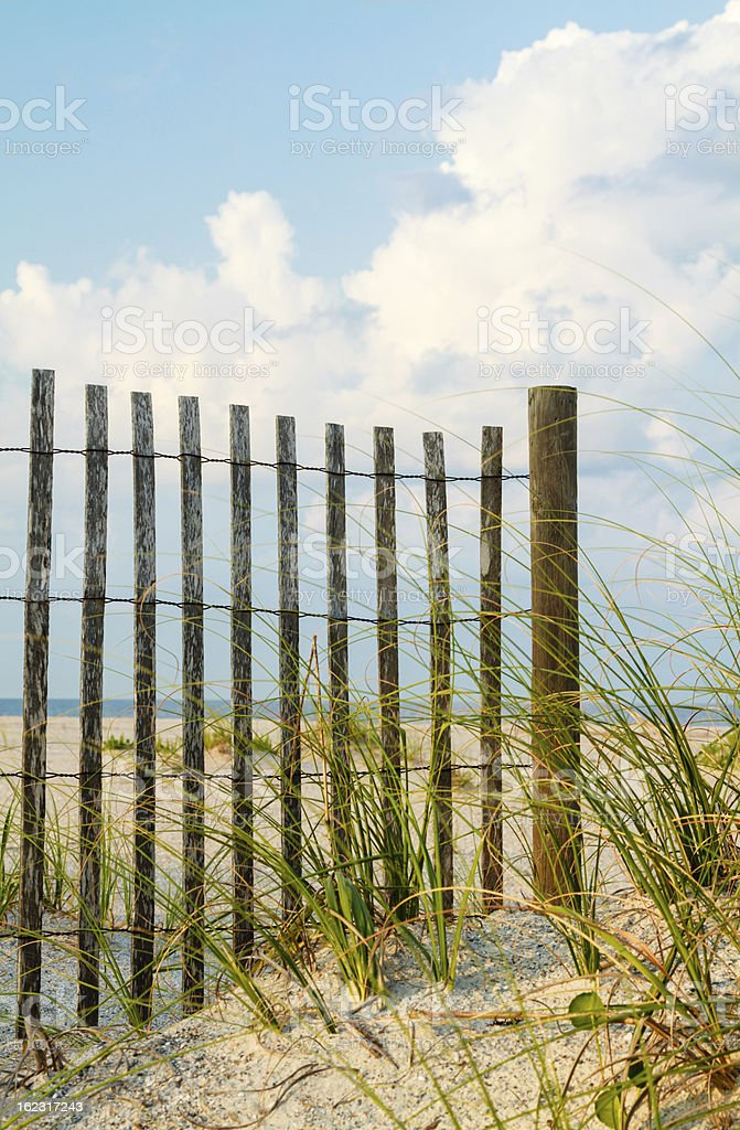 Sand Dune and Sea Grass along a fence. stock photo