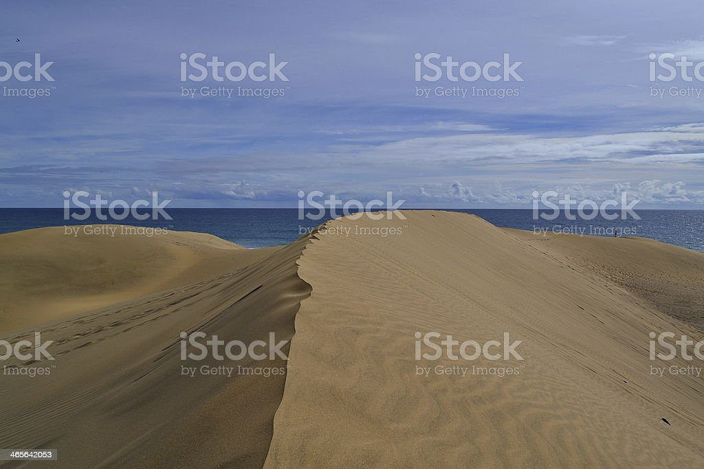 Sand Dune At Maspalomas, Gran Canaria. stock photo