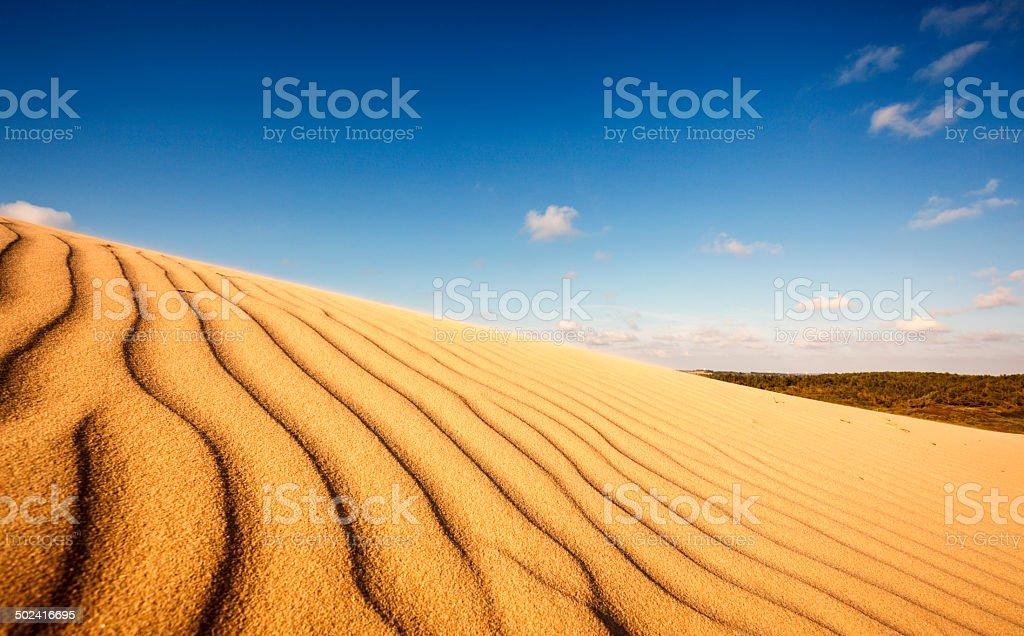Sand dune at Rubjerg Knude stock photo