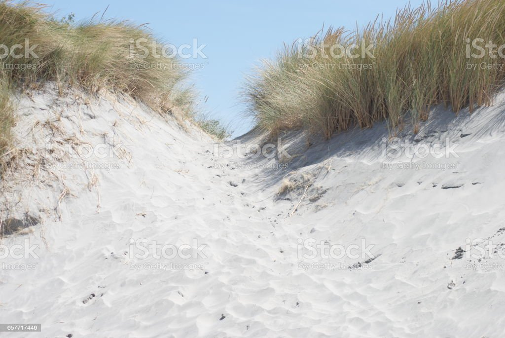 Sand Dune Background stock photo