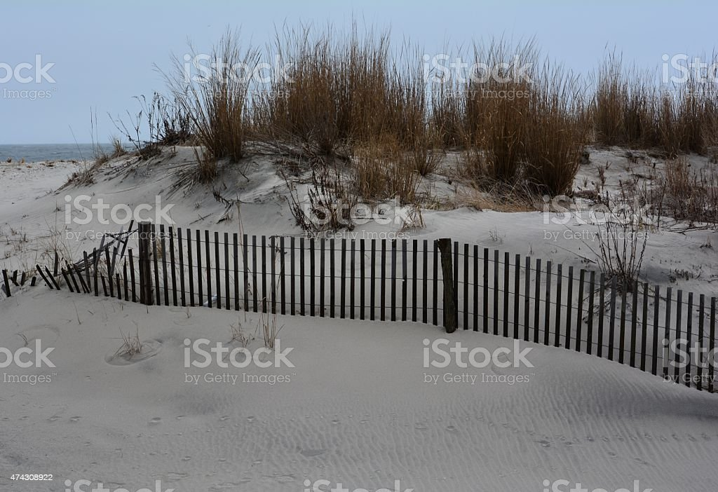 Sand Dune Beach Scene stock photo