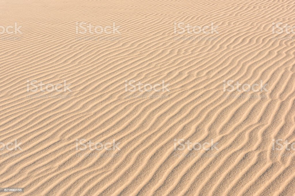 Sand Dune, Dessert, Textures of Nature stock photo