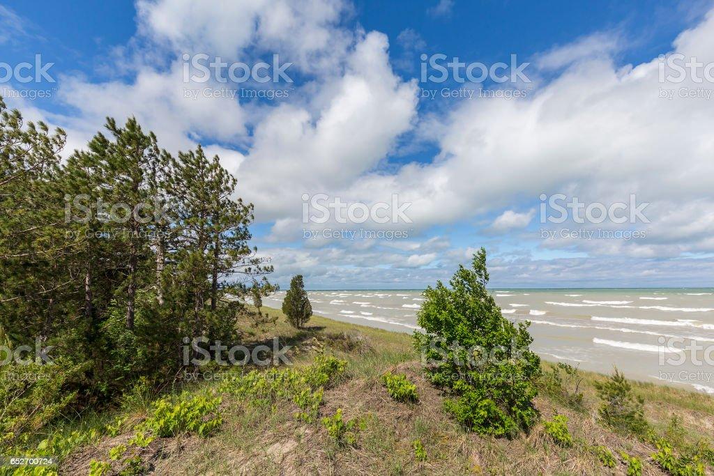 Sand Dune Ecosystem on the Shore of Lake Huron stock photo