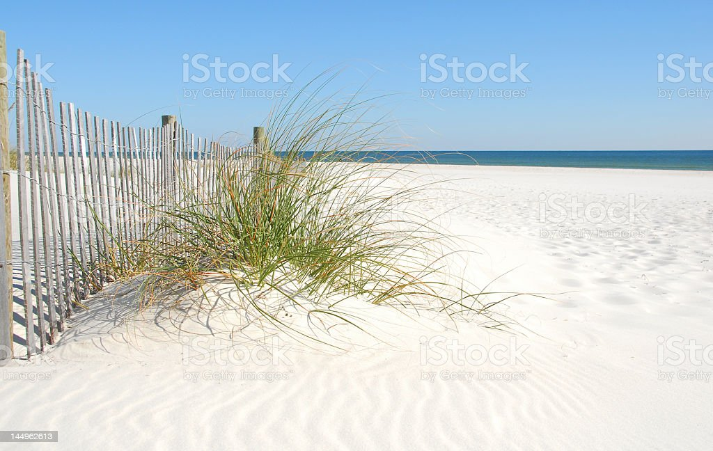 Sand dune, grass, and wooden fence at the beach stock photo