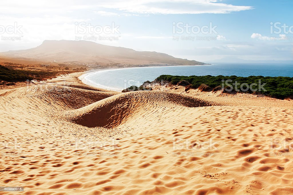 Sand dune of Bolonia beach, province Cadiz, Andalucia, Spine stock photo