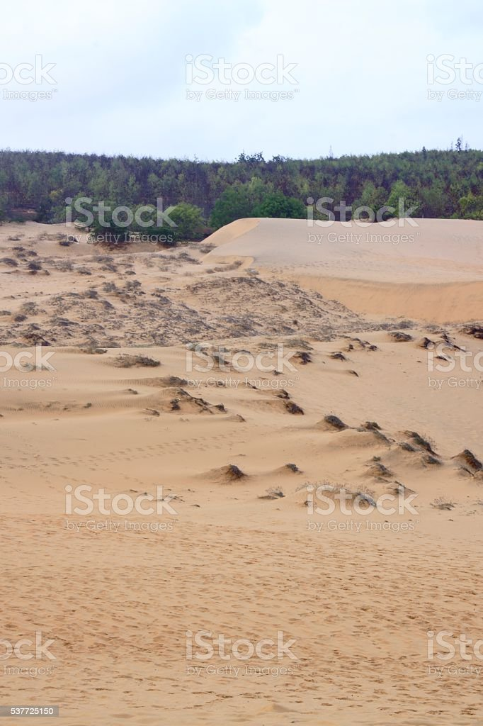 Sand dune with clear sky stock photo