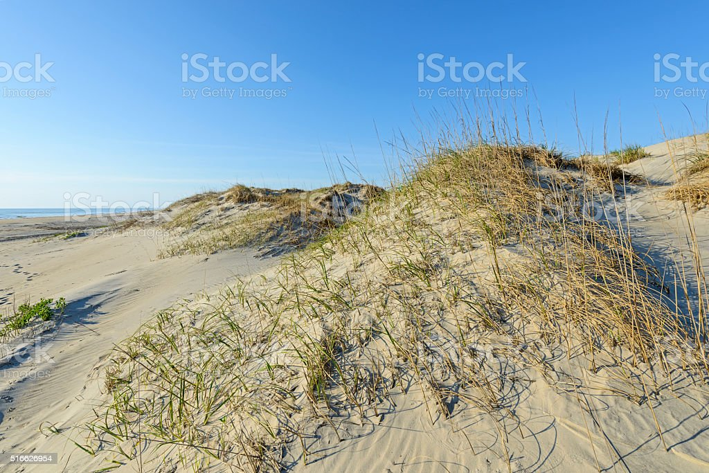 Sand Dunes and Beach in Early Morning Light stock photo