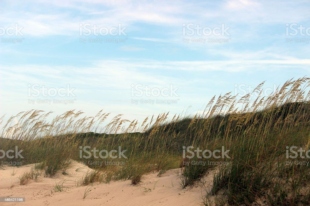 Sand Dunes and Blue Skies at the Beach stock photo