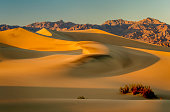 Sand Dunes and Funeral Range, Death Valley
