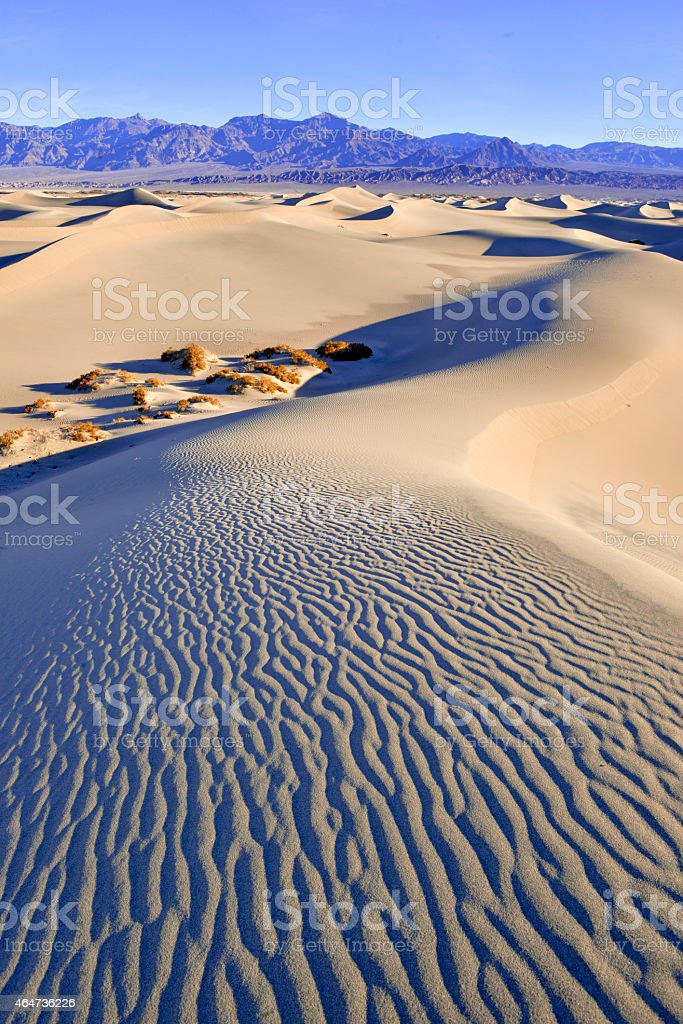 Sand dunes and mountains in desert landscape stock photo