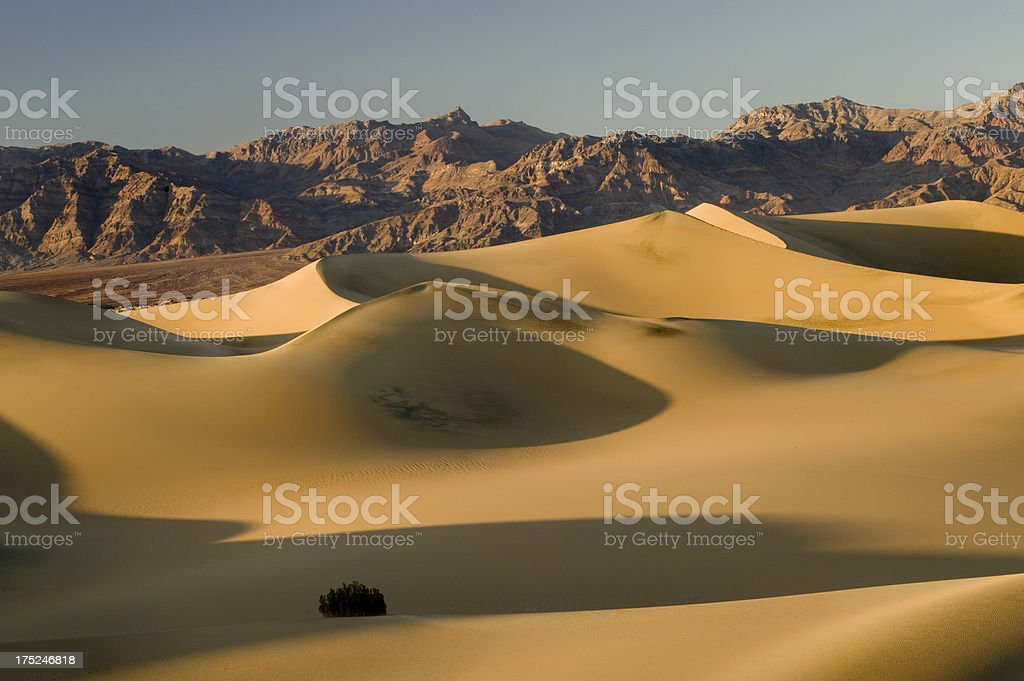 Sand Dunes and Ruby Mountains, Death Valley National Park royalty-free stock photo