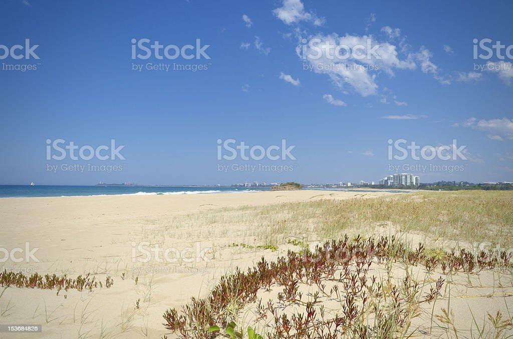 Sand dunes and vegetation with Sunshine Coast background stock photo