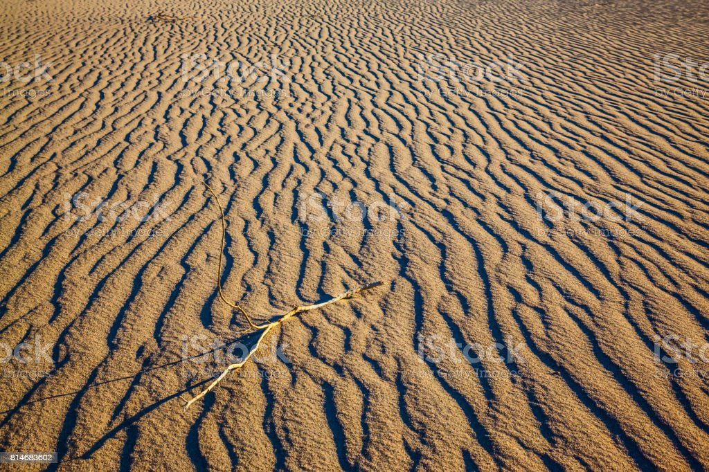 Sand dunes are covered with small ripples stock photo