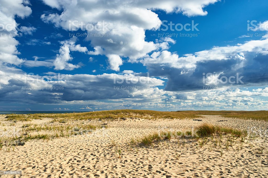Sand dunes at Cape Cod stock photo