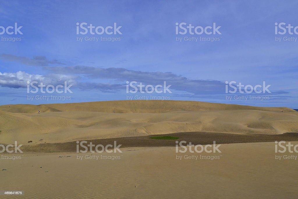 Sand Dunes At Maspalomas, Gran Canaria. stock photo