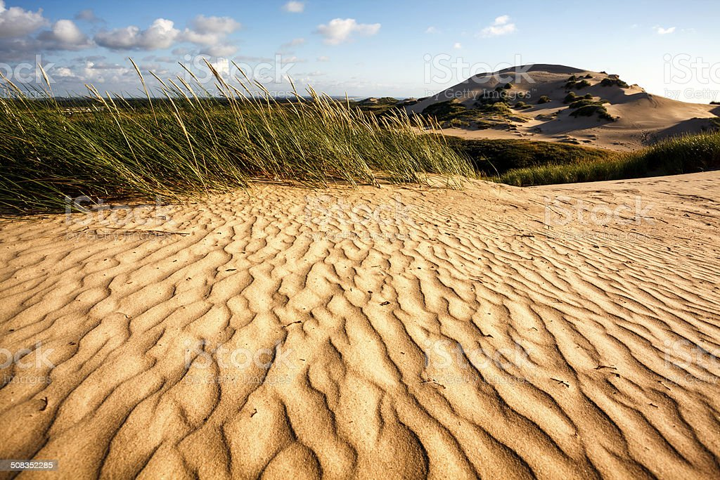Sand dunes at Rubjerg Knude, Denmark stock photo