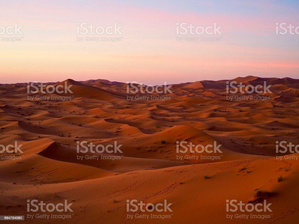 Sand dunes at sunset in Sahara Desert stock photo