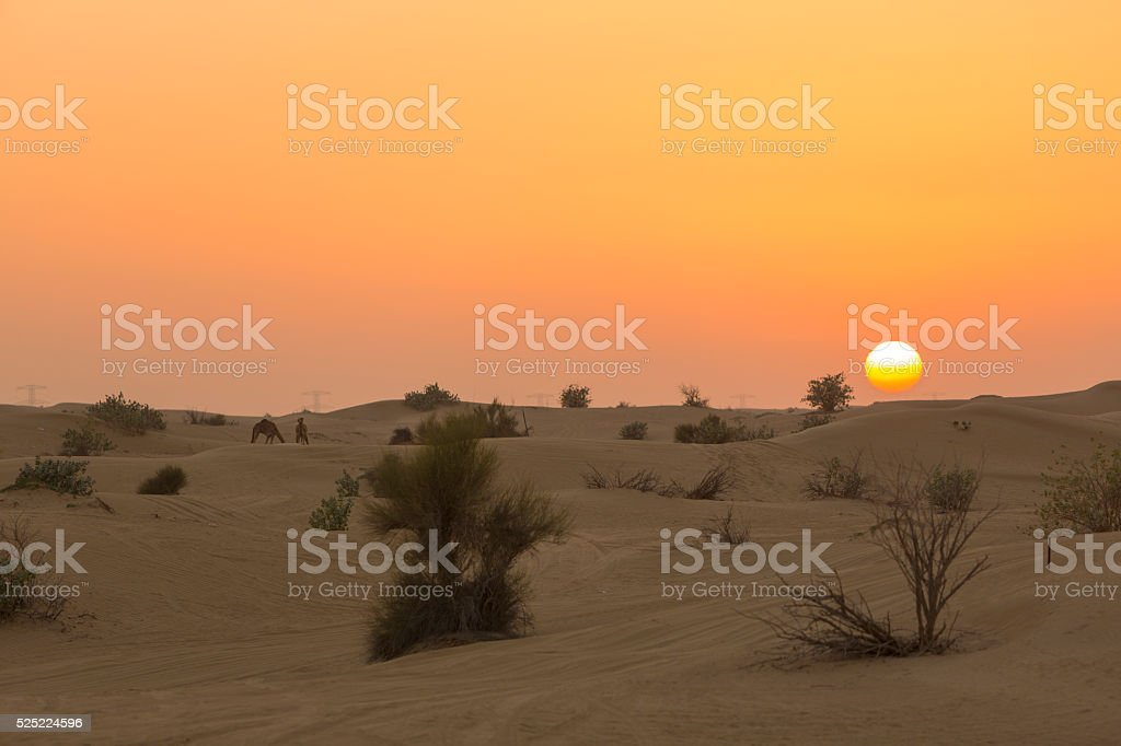 Sand dunes desert near Dubai in UAE stock photo