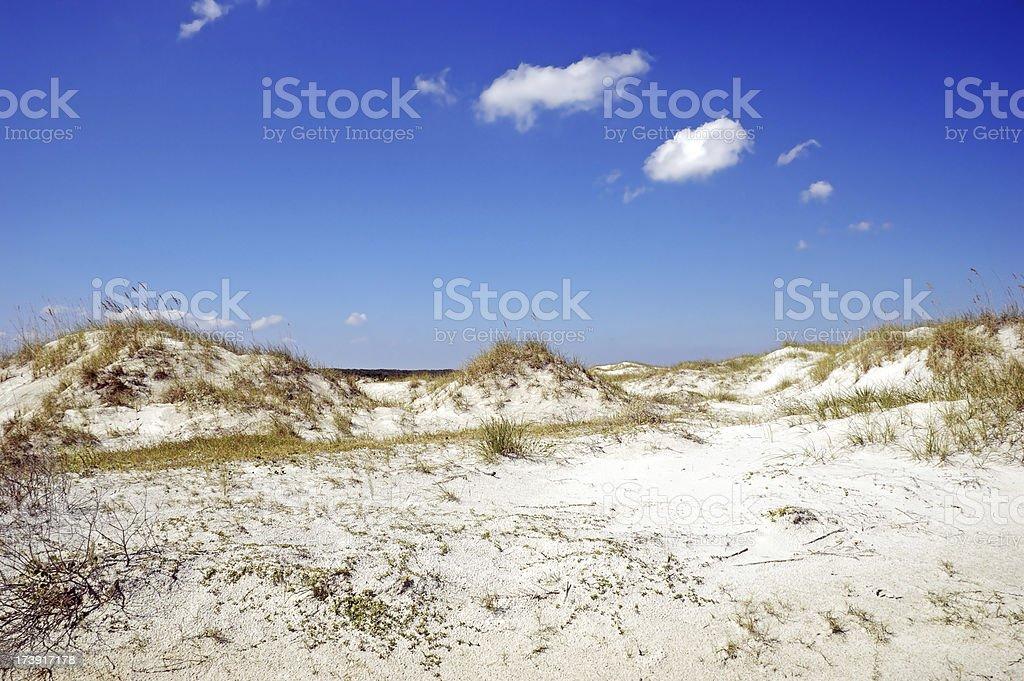 Sand Dunes Georgia Coast royalty-free stock photo