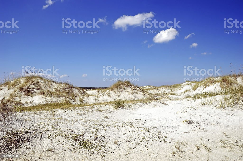 Sand Dunes Georgia Coast stock photo