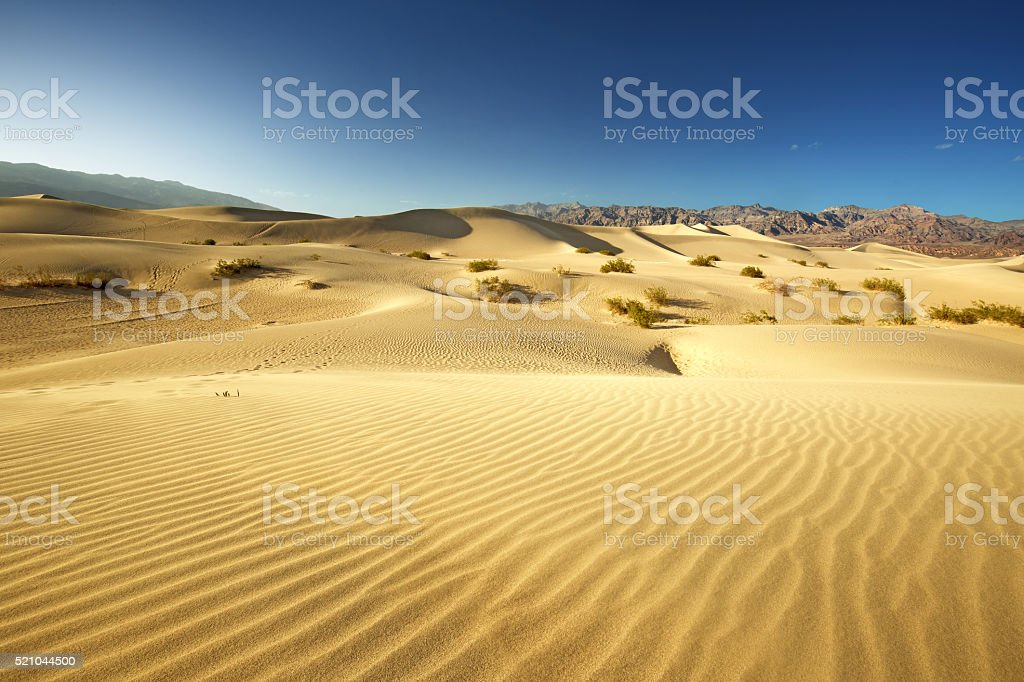 sand dunes in Death Valley National Park stock photo