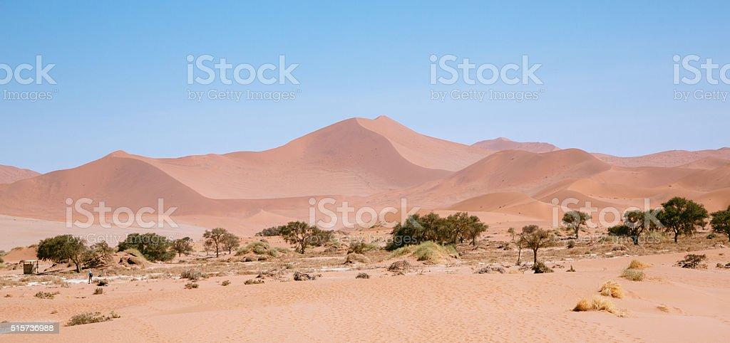 Sand Dunes in Namib Desert stock photo