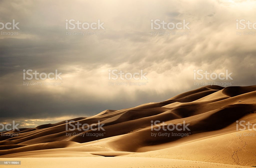 Sand Dunes in the Late Afternoon Sun stock photo
