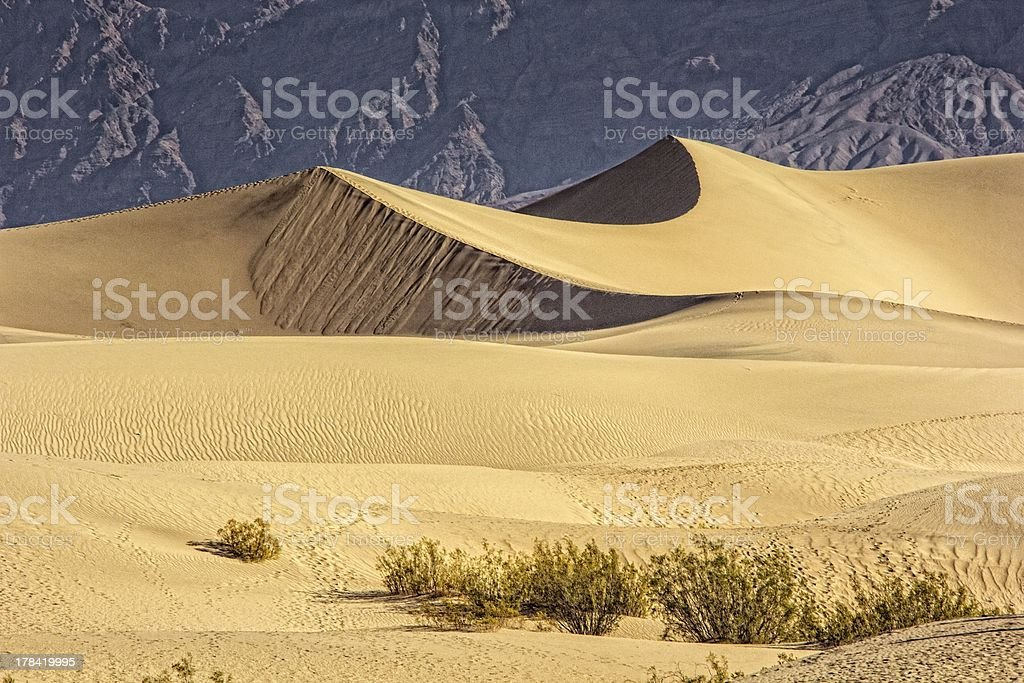 Sand Dunes in the Morning stock photo