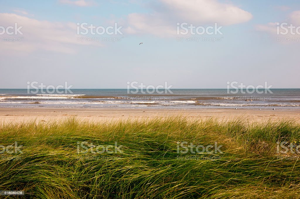 Sand dunes in West Galveston, Texas stock photo