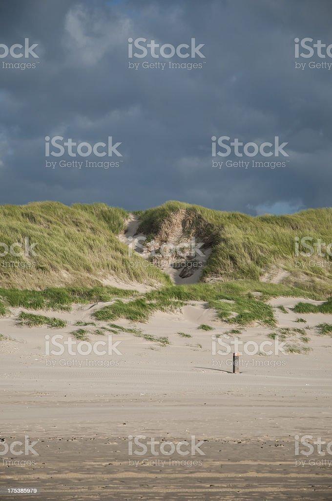 Sand dunes near Schoorl, the Netherlands stock photo