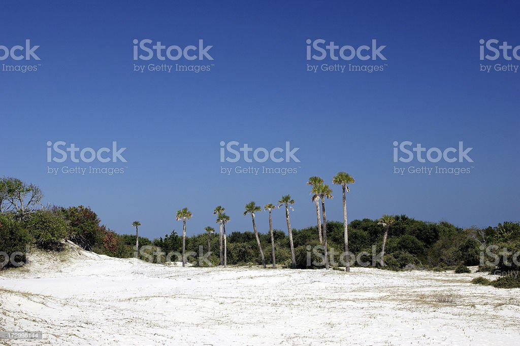 Sand Dunes of Cumberland Island Georgia royalty-free stock photo
