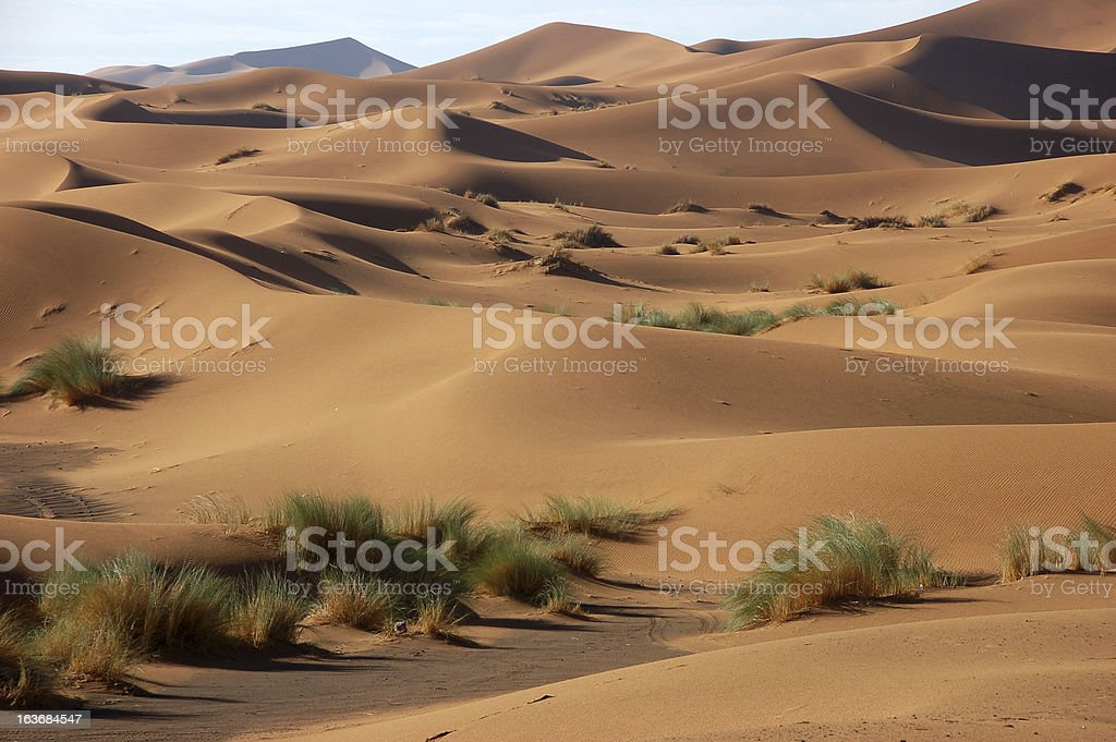 Sand Dunes of Erg Chebbi royalty-free stock photo