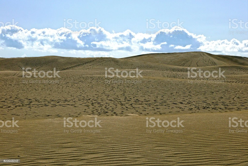 Sand Dunes of Maspalomas, Gran Canaria. SPAIN. stock photo