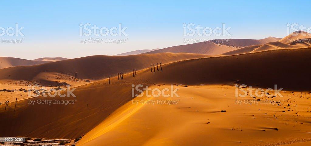 Sand dunes of Namib Desert stock photo