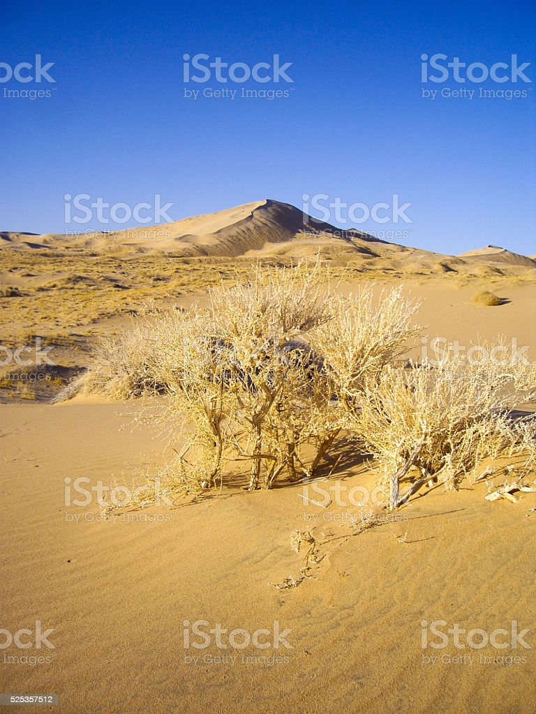 Sand dunes of the Mojave Desert stock photo