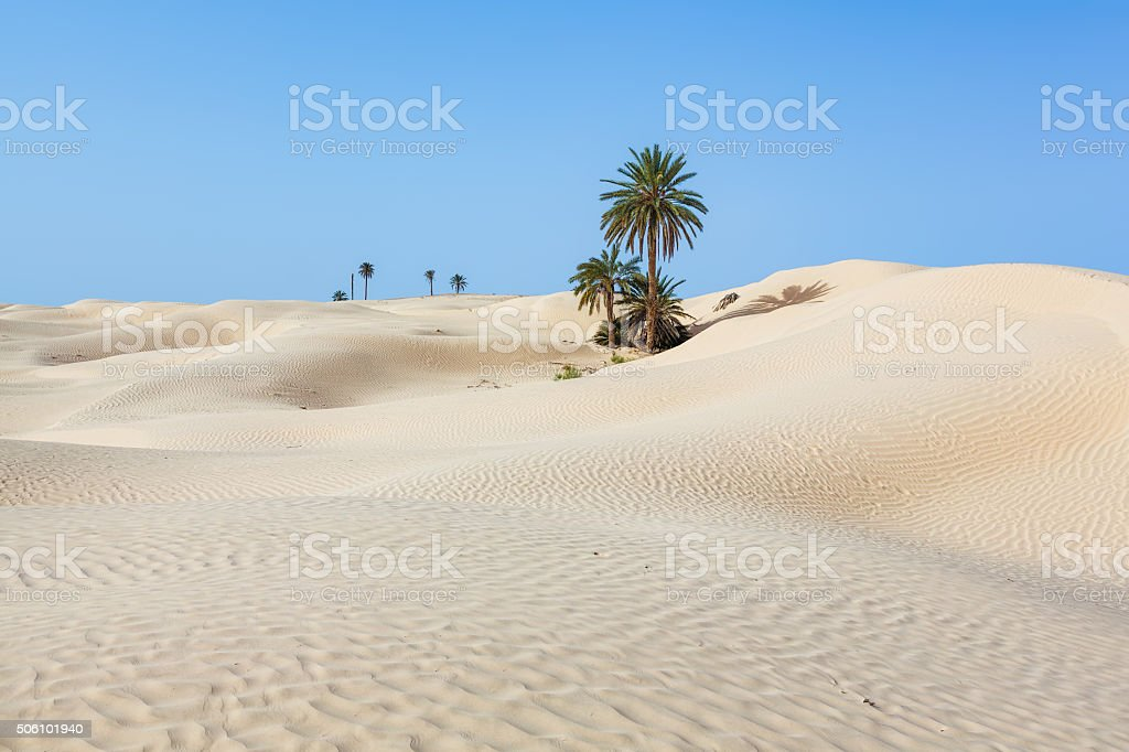 Sand Dunes of Zaafrane near Douz in Tunisia / North Africa stock photo