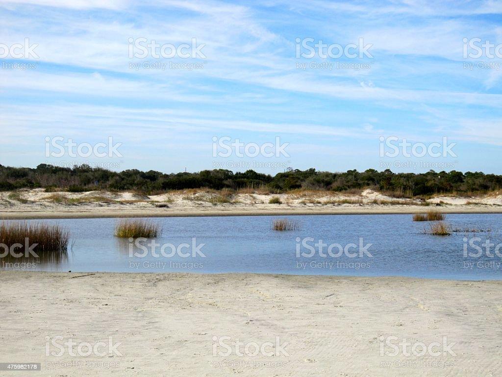 Sand Dunes on a Georgia Beach stock photo