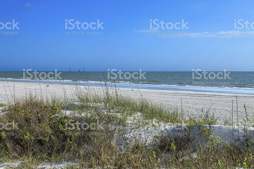 Sand Dunes on Clearwater Beach royalty-free stock photo