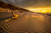 Sand dunes on the beach in northern Poland