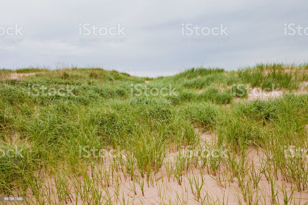 PEI Sand Dunes stock photo
