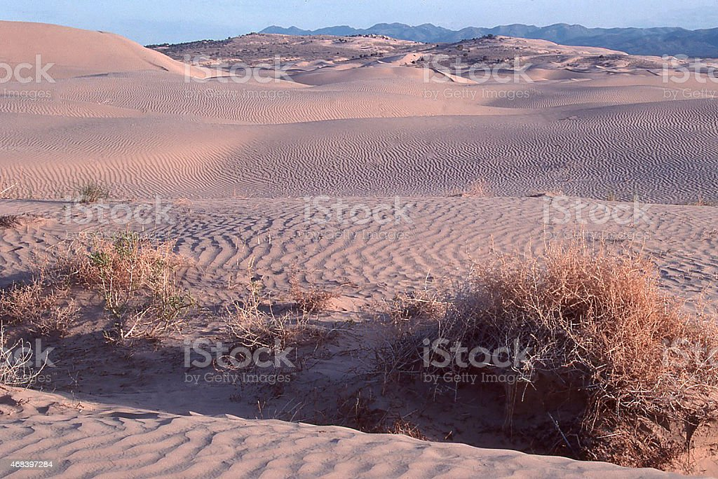 Sand Dunes Stovepipe Wells Death Valley California stock photo