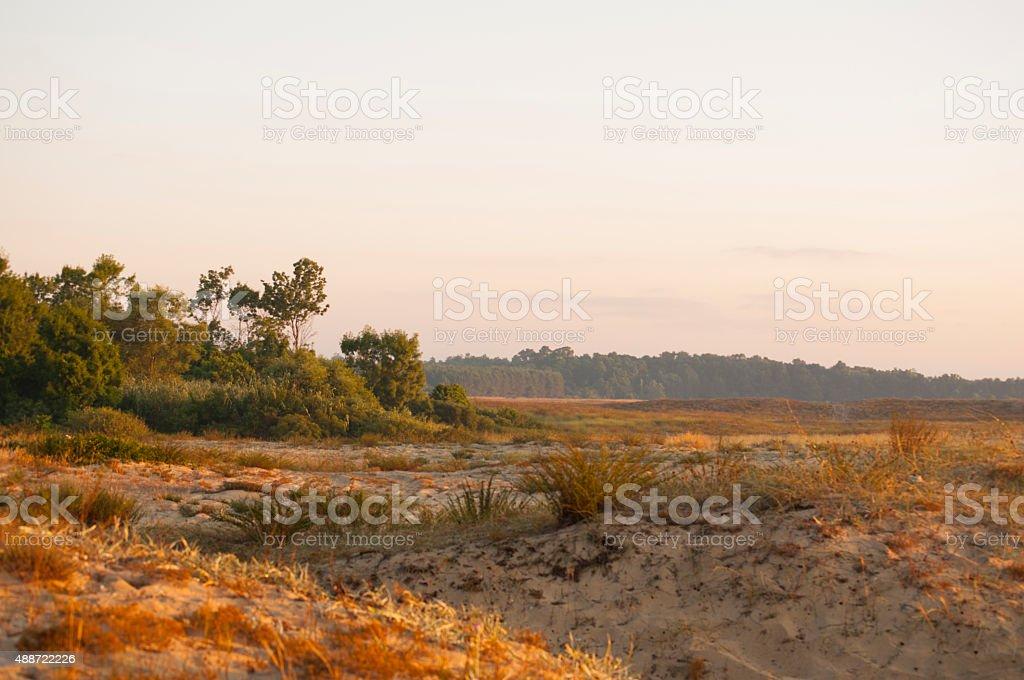 Sand dunes with skyline stock photo