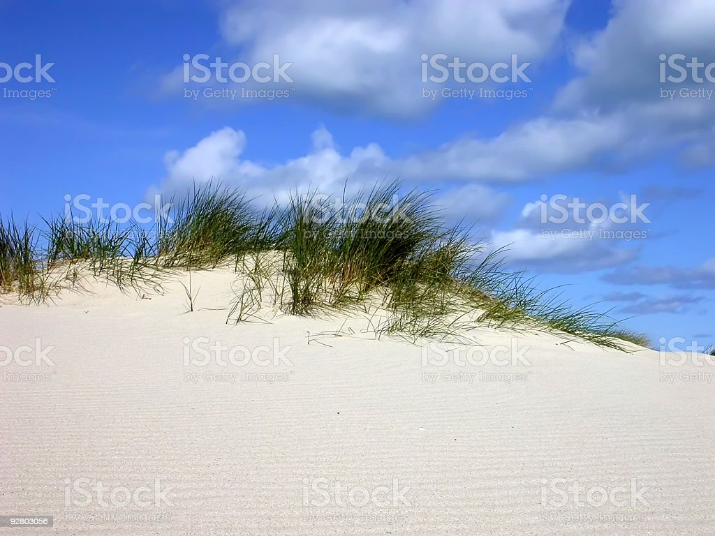 Sand, Grass & Sky royalty-free stock photo