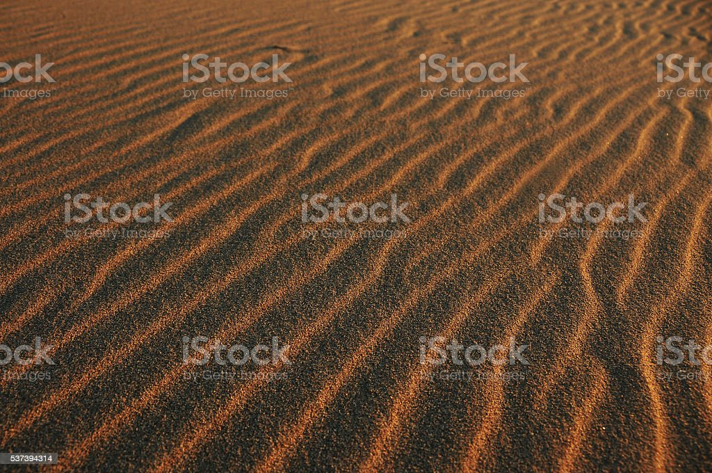 Sand marks on the beach stock photo